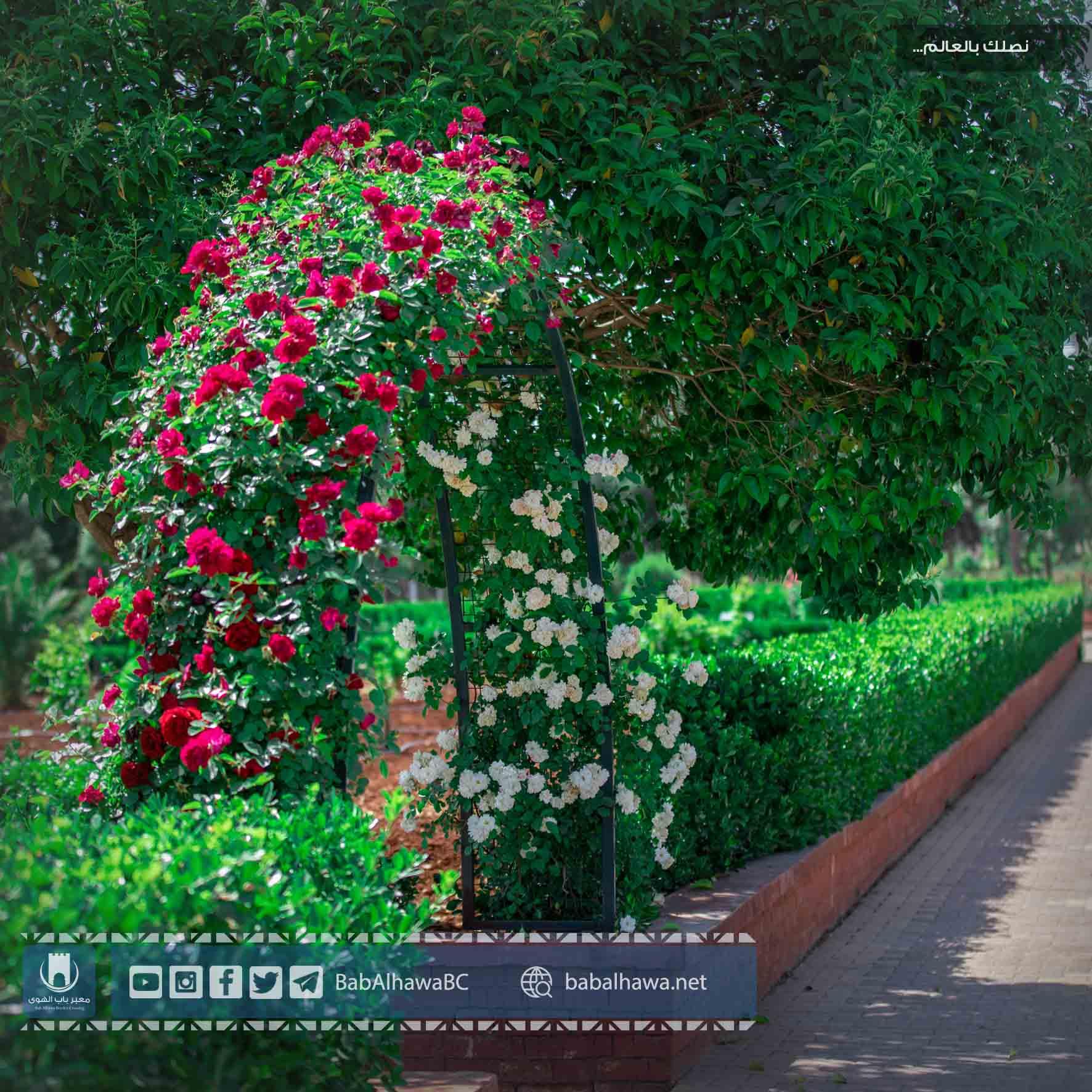 babalhawa Garden syria